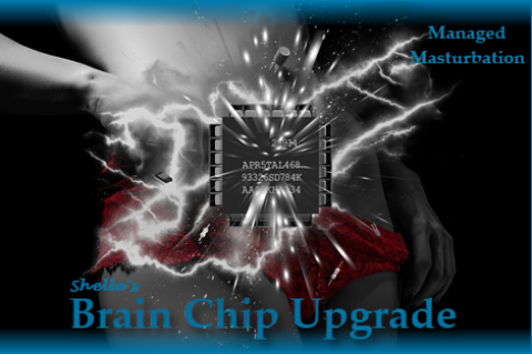 Brain Chip Upgrade--Managed Masturbation