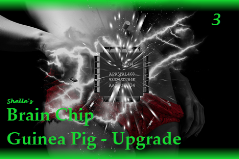 Brain Chip Upgrade-Guinea Pig 3