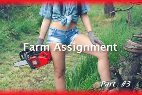 Farm Assignment Part 3