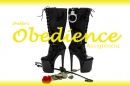 Shelle-Obedience-Saving-Assignment