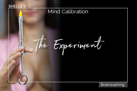 THE EXPERIMENT - Mind Calibration